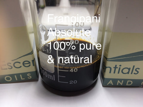 Frangipani Absolute solvent extracted