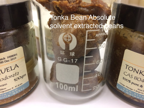 Tonka Bean Oil ( absolute)
