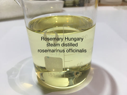 Rosemary Hungary steam distilled