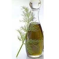 Dill seed Essential Oil <br><i><small>anethum graveolens</small></i></br>