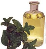 Spearmint Essential Oil Australia <br><i><small>mentha spicata</small></i></br>