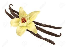 Vanilla Bean Sweet Fragrance