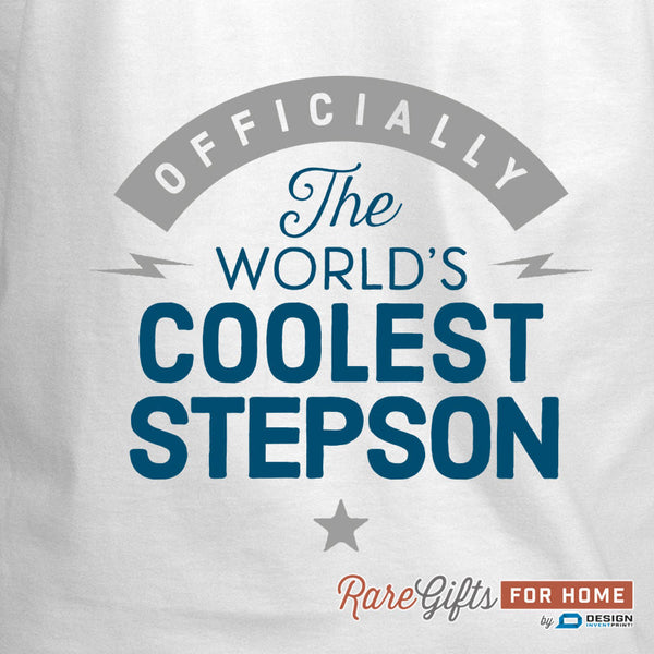 Stepson Gift, Birthday Gift For Stepson! Funny Apron, Coolest Stepson, Cooking Gift, Awesome Stepson, Personalized, Present For Stepson
