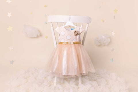 Missy - Girls Party Dress - Flower Girl Dress