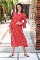 Red Floral Striped Maternity & Nursing Dress