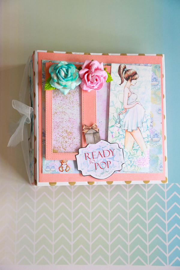 Ready-to-Pop Pregnancy Record Book
