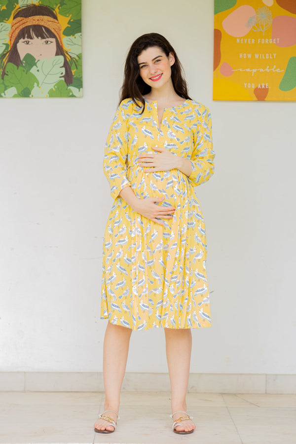 Butter Yellow Maternity & Nursing Dress