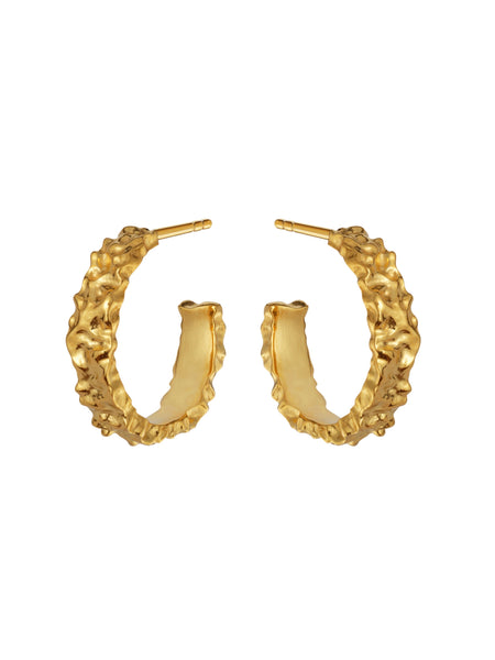 Aio Medium Earrings - ensemble