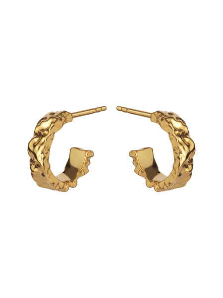 Aio Small Earrings - ensemble