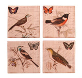 Postcard Bird Coasters - Individual or Set of 4