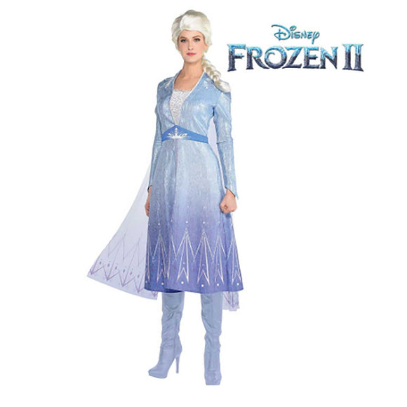 Womens Elsa Dress & Wig Costume from Frozen II