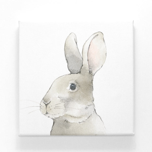 Wise Bunny on Canvas