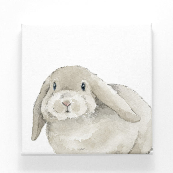 Sweet Bunny on Canvas