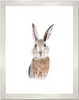 Curated Nest: Nurseries and Design - Baby Bunny Print - Art