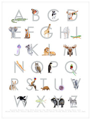ABC Animals Print