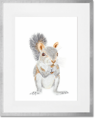 Baby Squirrel Print