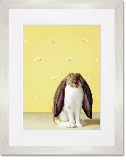 Curated Nest: Nurseries and Design - Floppy Ears Rabbit Print - Art