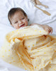 Curated Nest: Nurseries and Design - Busy Bees Organic Swaddles Set - Blanket