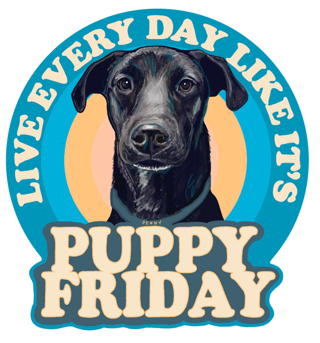 3-Pack Puppy Friday Penny Sticker - Jupmode