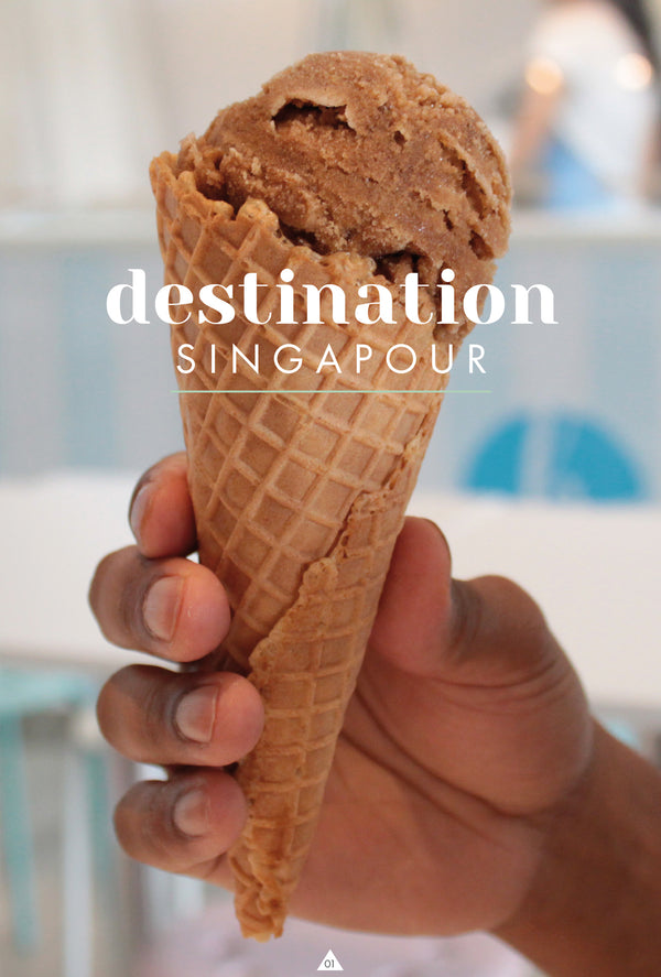 Destination Singapore by Caroline Gomez