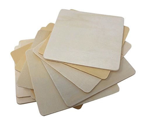 12 Piece Birch Wood Craft Unfinished Blank Coasters 4 x 4 For Craft Projects