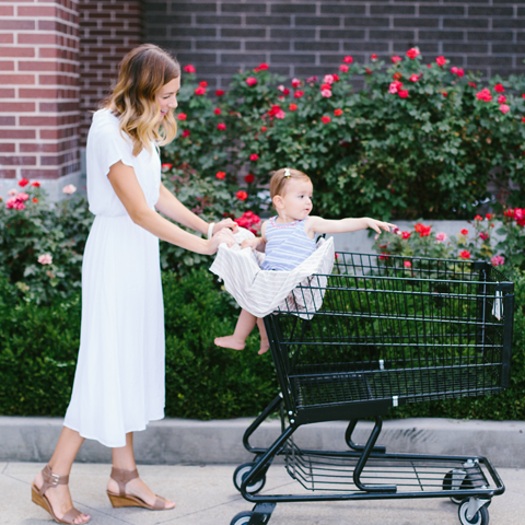 Shopping Cart Cover and Nursing Cover