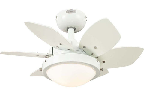 "Westinghouse 7247100 24"" Quince in White with Reversible Beech and White Blades Indoor Rated Ceiling Fan"