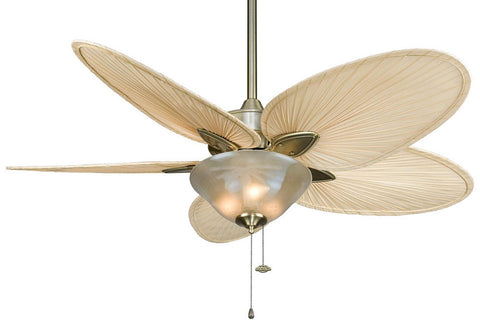 "Fanimation FP7500AB-F423AB-G210 52"" Windpointe Ceiling Fan in Antique Brass"