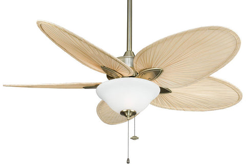 "Fanimation FP7500AB-F423AB-G456 52"" Windpointe Ceiling Fan in Antique Brass"