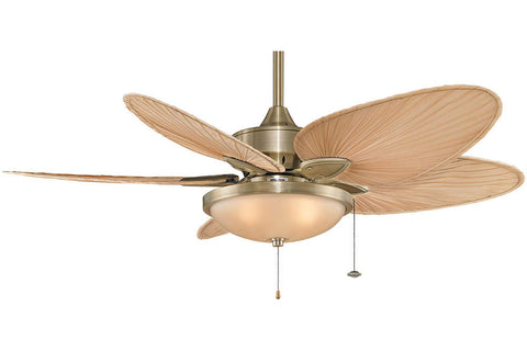 "Fanimation FP7500AB-LK114AAB 52"" Windpointe Ceiling Fan in Antique Brass"