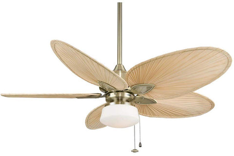 "Fanimation FP7500AB-LKLP102AB 52"" Windpointe Ceiling Fan in Antique Brass"