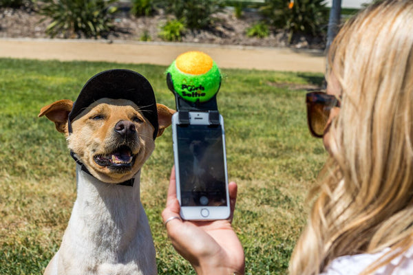 How to get your Dog to Smile in a Selfie