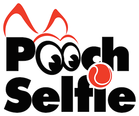 Clever Dog Products (Pooch Selfie)- As Seen on Shark Tank