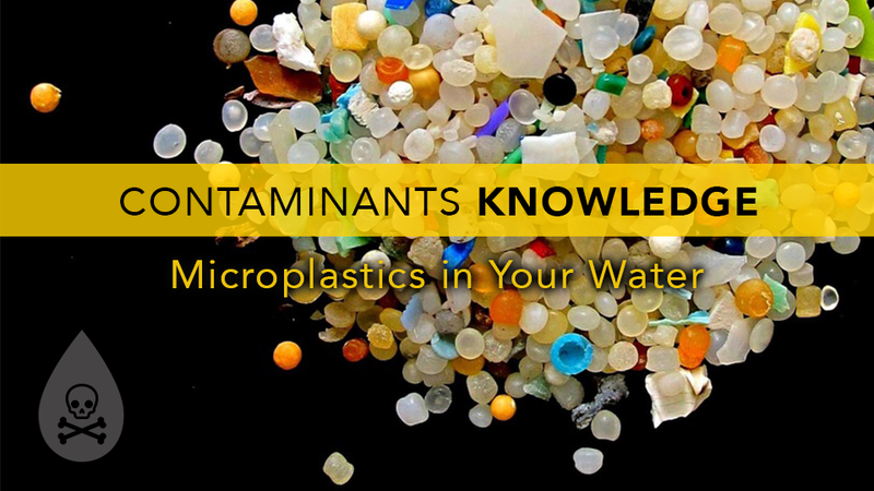 Microplastics in Your Water