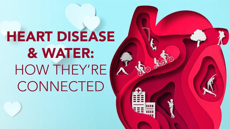 Heart Disease, Water & What It Means For Your Health