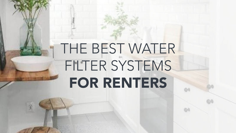 What is the best water filter system for renters?