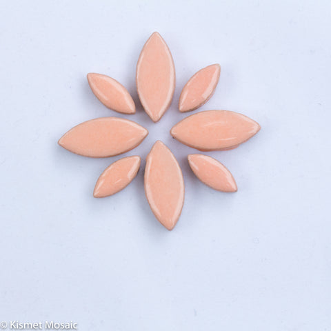 cp-Peach Ellipse/Petal
