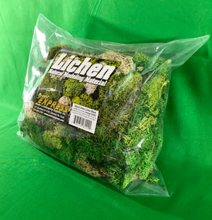 Scenic Express EX8002 - Mixed Green Lichen 1/4 Kilo