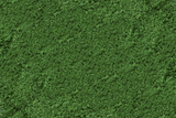 Scenic Express EX805B - Medium Green Grass Fine - 32 Oz.
