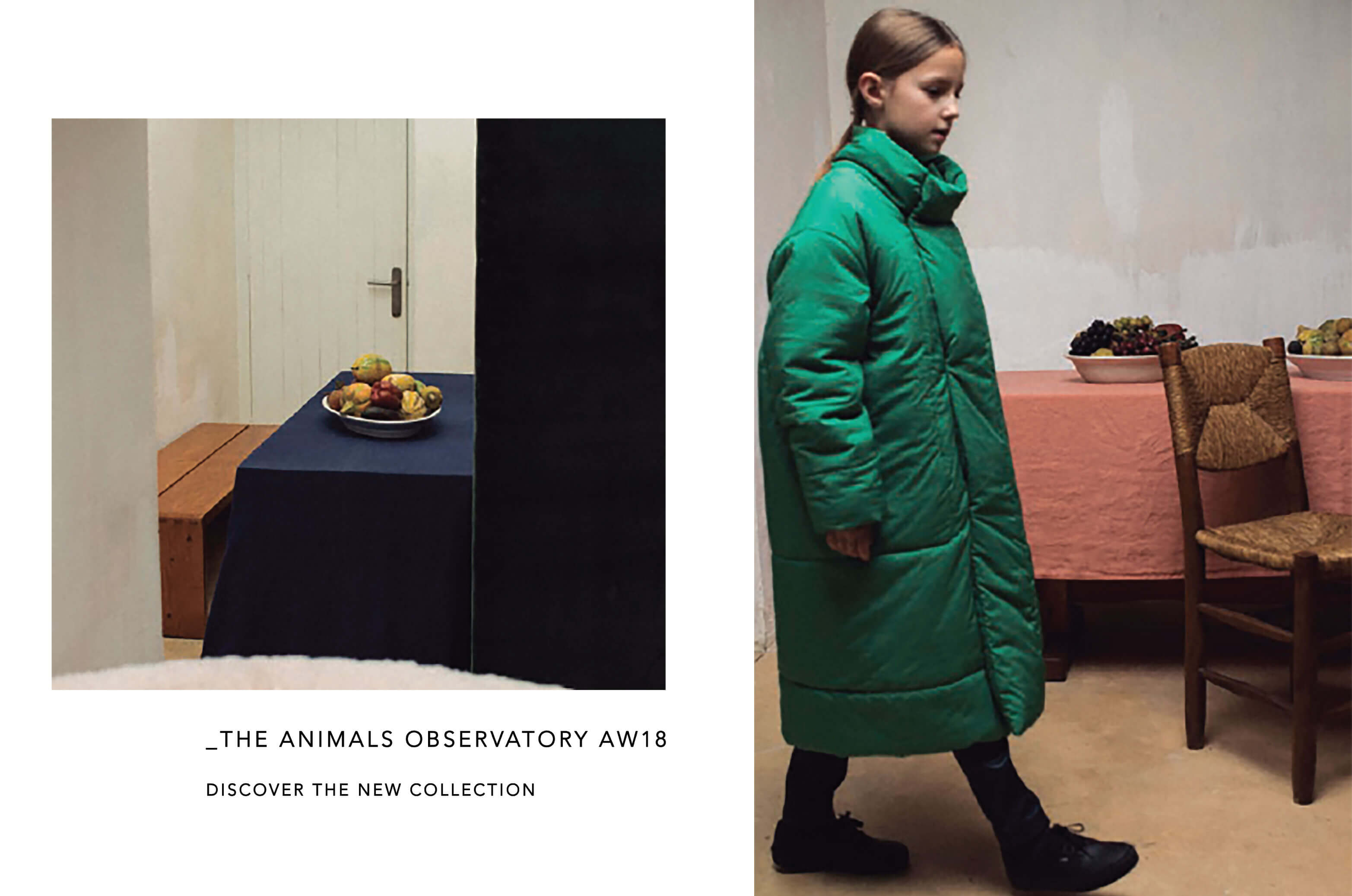 THE ANIMALS OBSERVATORY AUTUMN/WINTER 2018 | BIEN BIEN