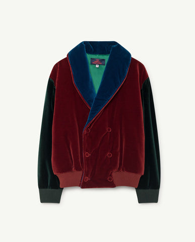 The Animals Observatory Tiger Velour Kid's Color Blocked Jacket Maroon Green | BIEN BIEN