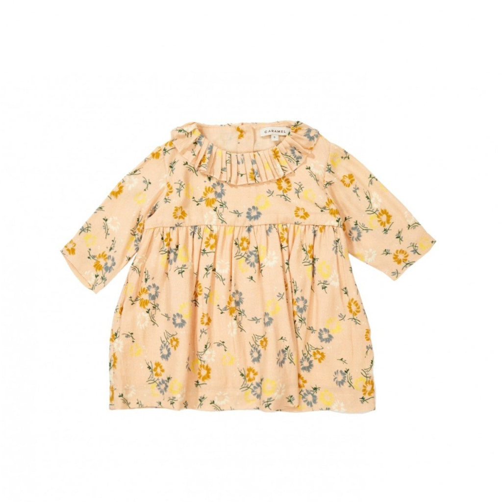 Caramel Avocet Baby Girl Dress Blush Painted Flower | BIEN BIEN