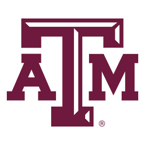Texas A&M Collegiate Silicone Rings