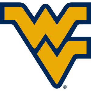 West Virginia Collegiate Silicone Rings