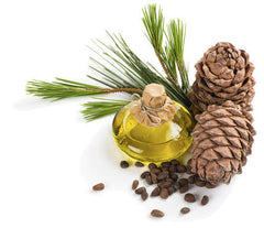 Cedarwood Essential Oil - Majestic Pure