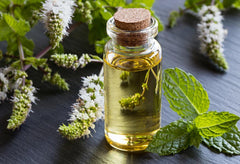 Peppermint Essential Oil - Majestic Pure