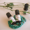 Eucalyptus Oil (1 oz)