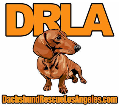 Dachshund Rescue Los Angeles Logo