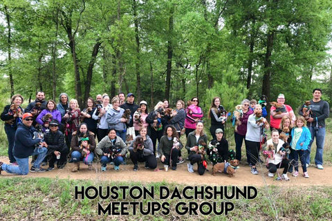Houston Texas Dachshund Group