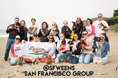 San Francisco Dachshund Group